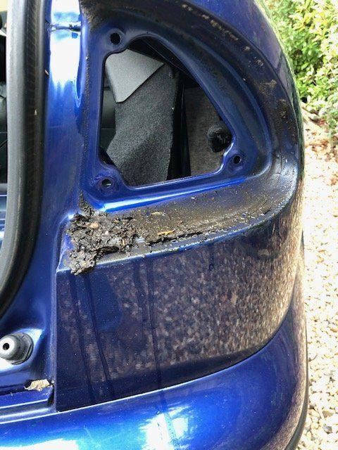 muddy rear light.jpg