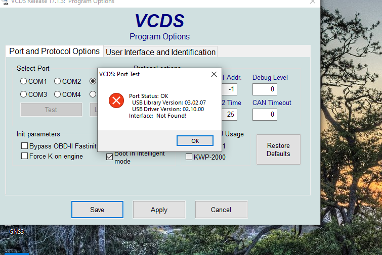 vcds2.PNG